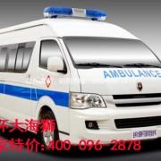 城市小天使金杯大海狮救护车