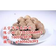 潮汕肉丸培训多少钱,广州哪里有学肉丸技术