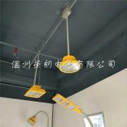 洛阳TG732B防爆节能灯-长寿命80W防爆灯