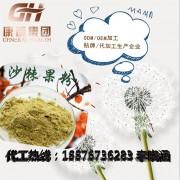 线上沙棘果粉固体饮料加工 沙棘果粉生产ODM代加工厂家