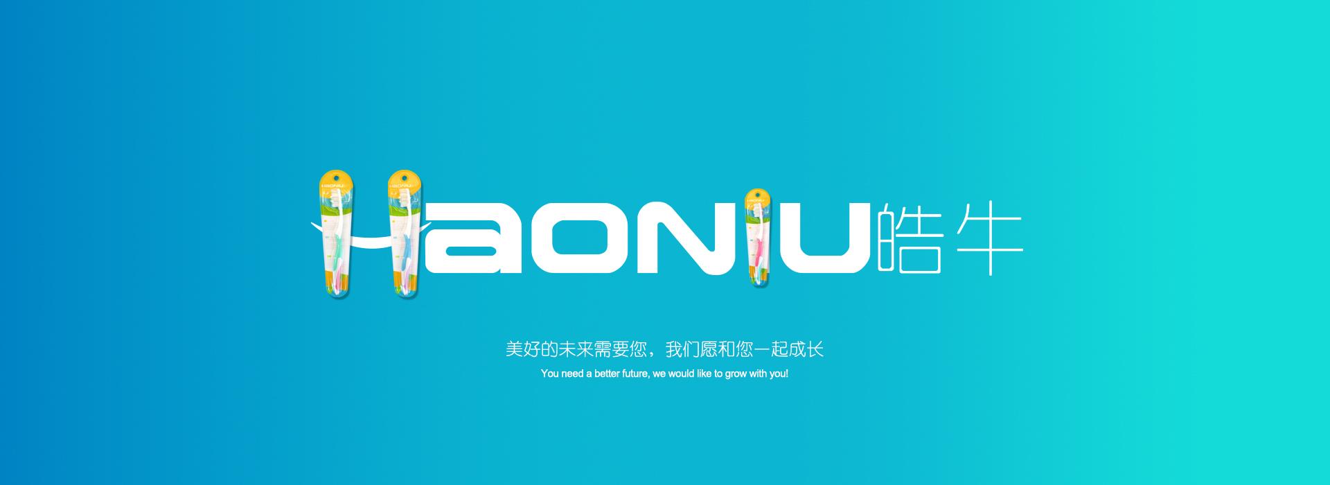扬州牙刷厂家批发 haoniu皓牛新品硅胶纳米双支套装HT-404批发示例图1