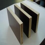 中建七局专用建筑覆膜板周转次数高德州星冠木业