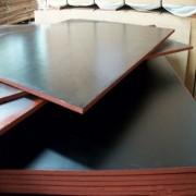 中铁二局专用清水模板杨木全整芯德州星冠木业