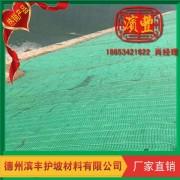 护坡植草植被垫 滨丰护坡植被垫 土工环保生态植草毯