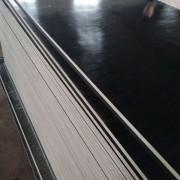 淄博专用建筑模板防水耐用德州星冠木业