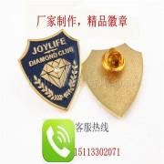 钻石徽章、镶钻徽章、公司标志徽章、高档襟章