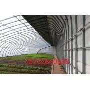 椭圆管蔬菜棚,12米跨度无立柱暖棚