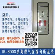 电捕焦油器煤气含氧量分析仪生产厂家