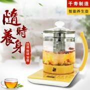 千寿康多功能养生壶家用全自动煎药壶养生煮茶壶电热水壶花茶壶