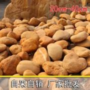 景区公园点缀黄蜡石黄色石头景观石厂家