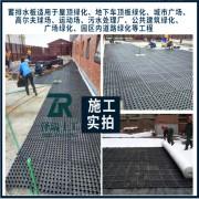 太原地下室顶板排水板/过滤无纺布